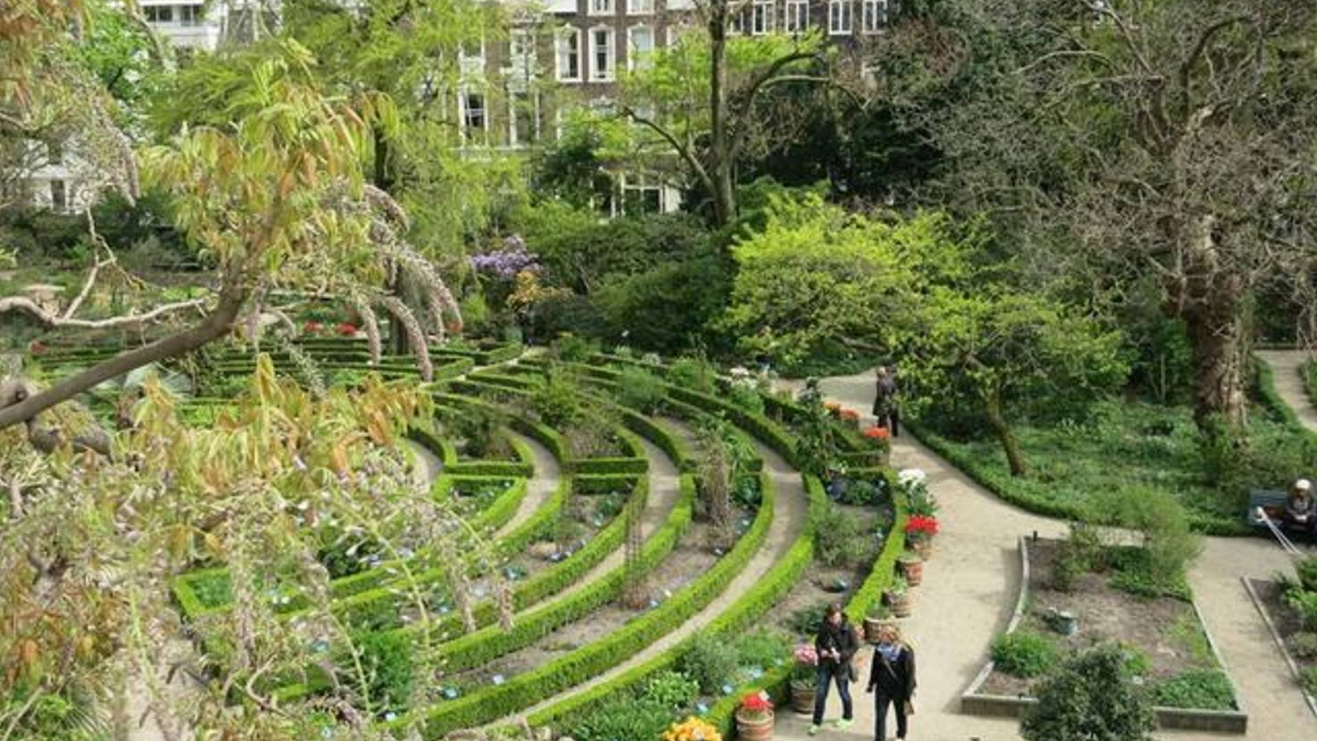 5 Places To Go For A Lovely Walk In Amsterdam