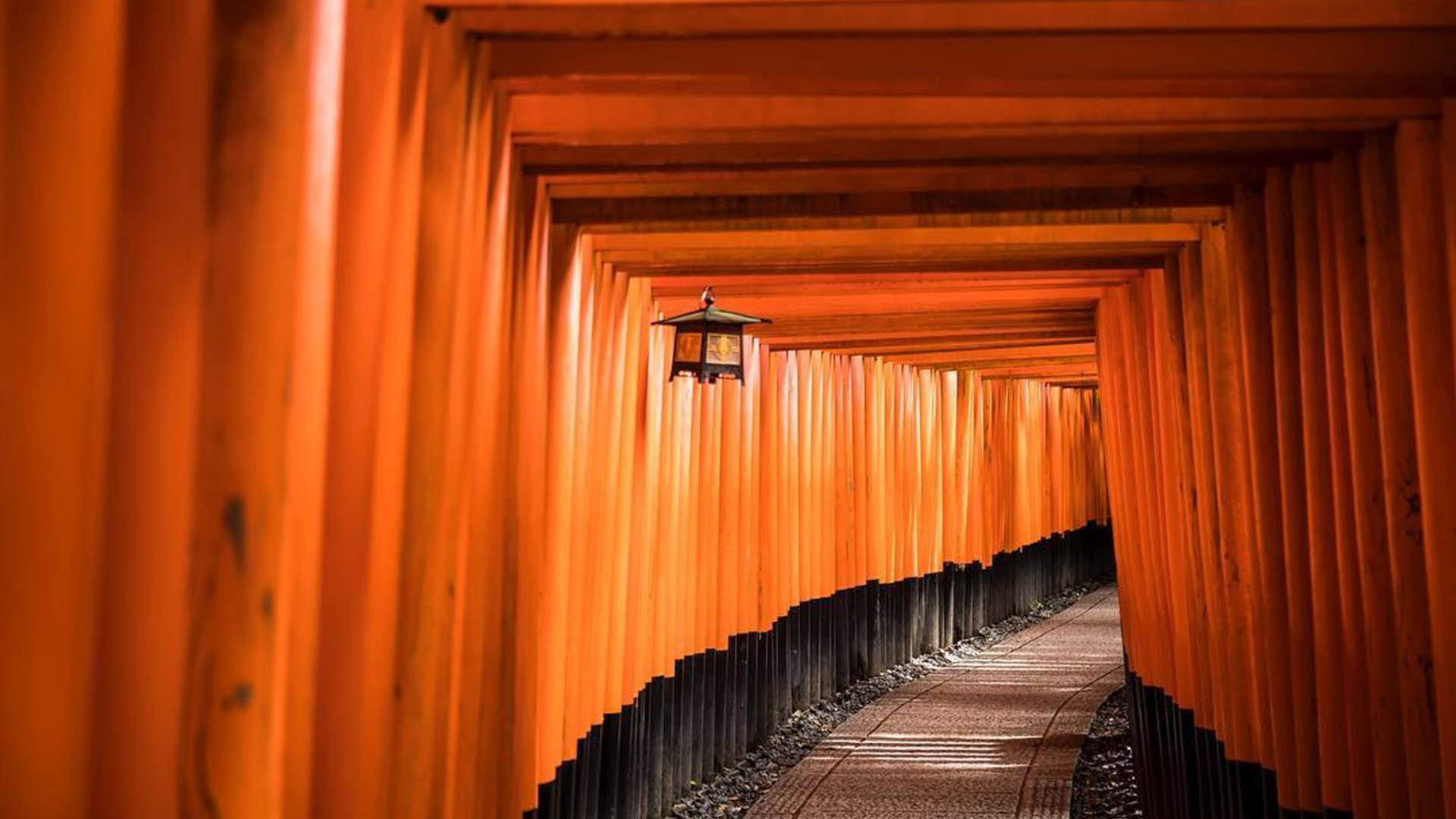 The Journy Guide To Kyoto