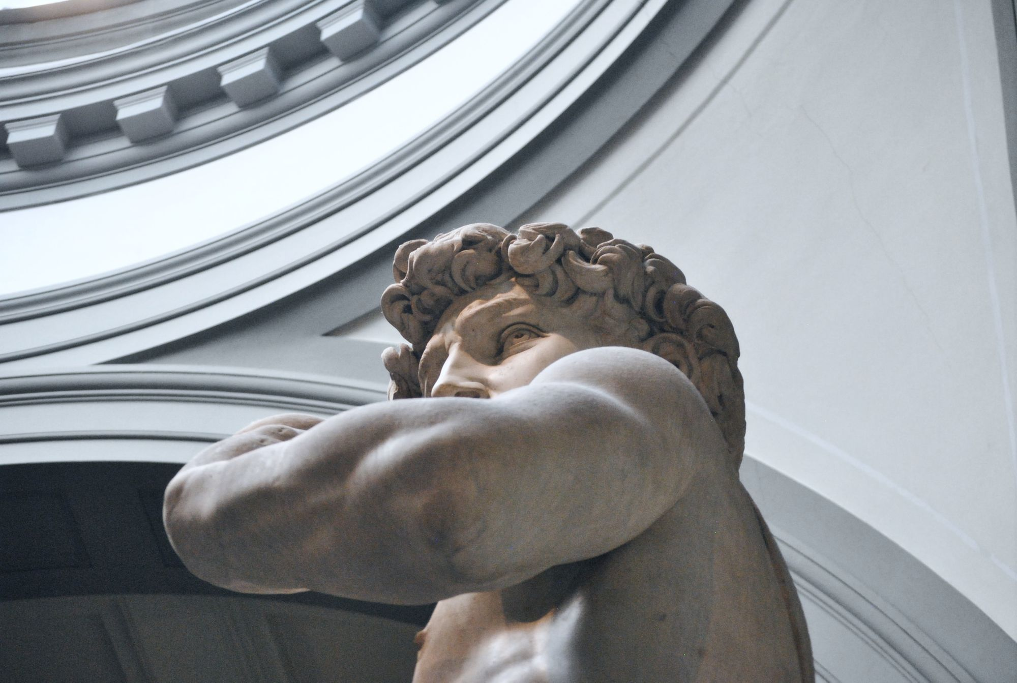 Top 10 Museums In Florence