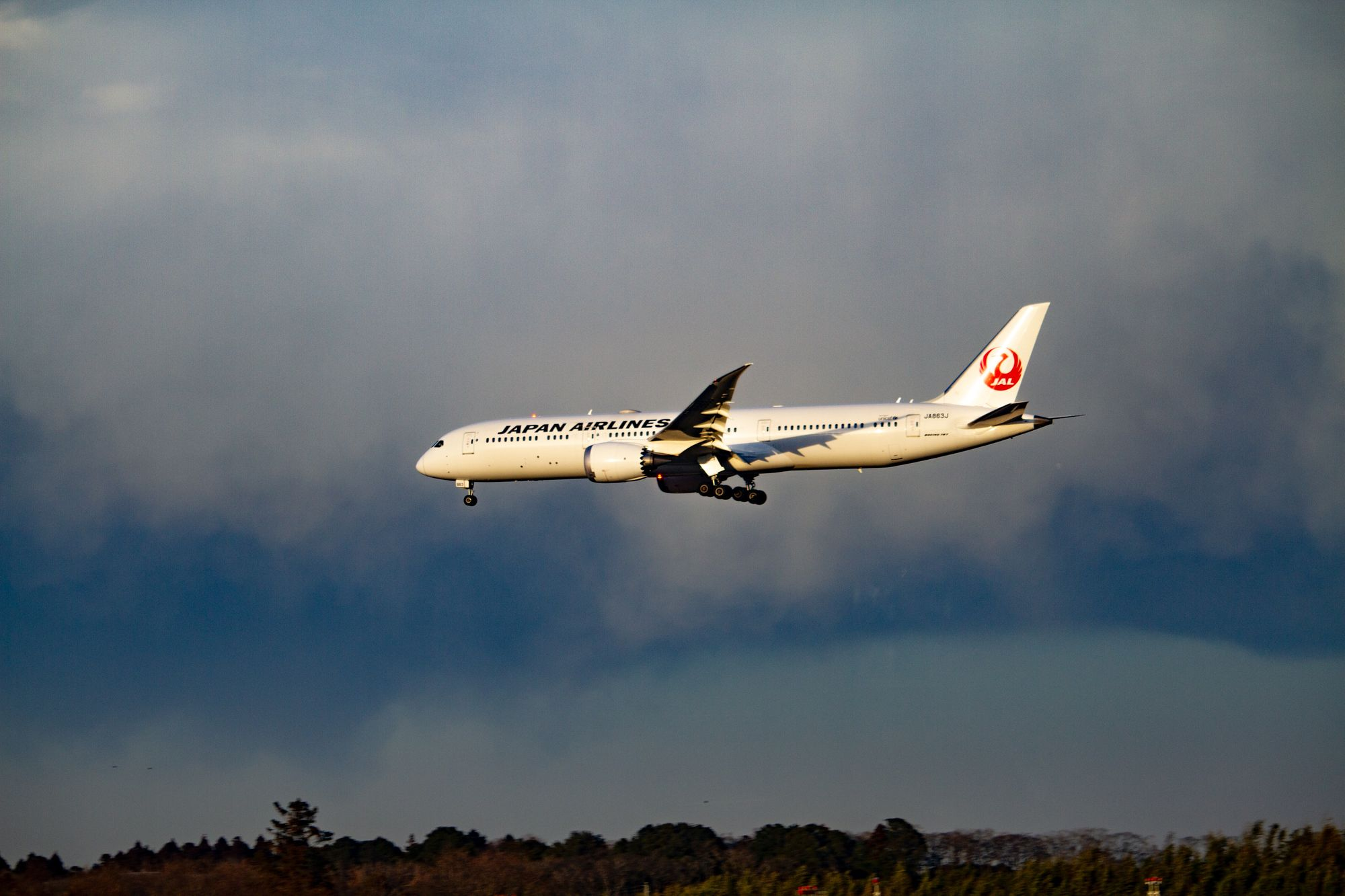 BIG NEWS: Japan Airlines Is Officially Giving Away Thousands Of Round-Trip Flights